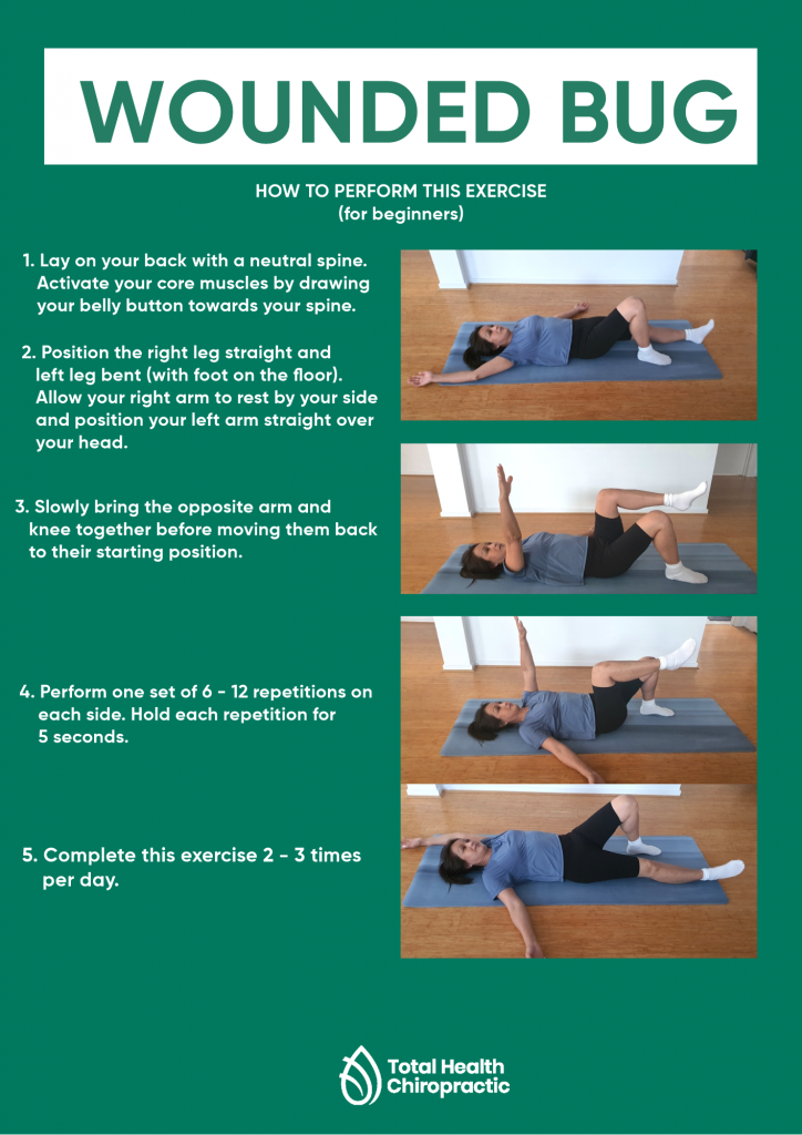Infographic describing/showing how to do wounded bug exercise
