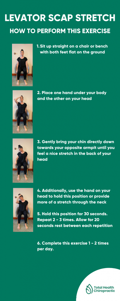 levator scap stretch infographic