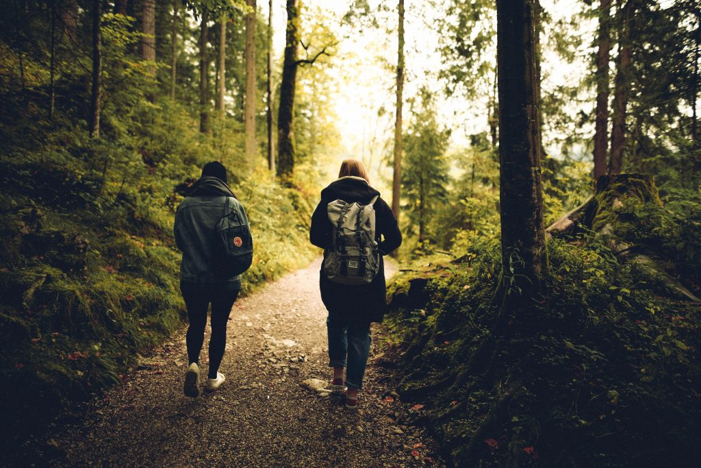 Two friends walking along a path in a forest