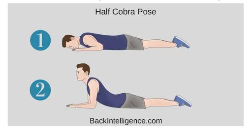 half cobra pose stretch infographic